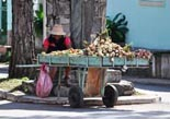 Cuba individuele rondreis met Tui