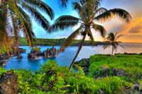 Vakantie op Hawaii